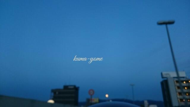 f:id:kuma-yome:20170312210407j:image