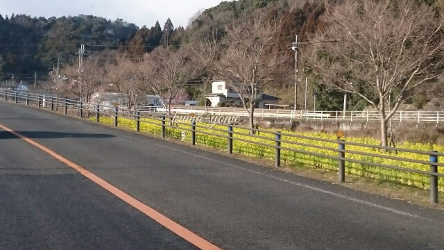 f:id:kuma-yome:20170315232603j:image