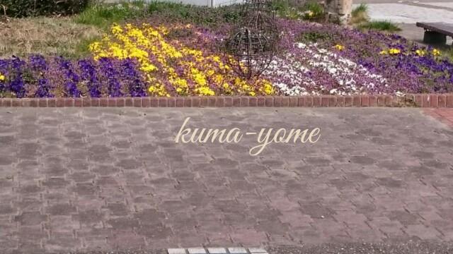 f:id:kuma-yome:20170318224919j:image