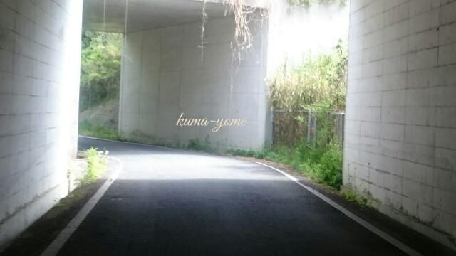 f:id:kuma-yome:20170508113558j:image