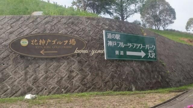 f:id:kuma-yome:20170508113605j:image