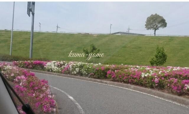 f:id:kuma-yome:20170508113618j:image