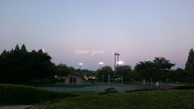 f:id:kuma-yome:20170522233315j:image