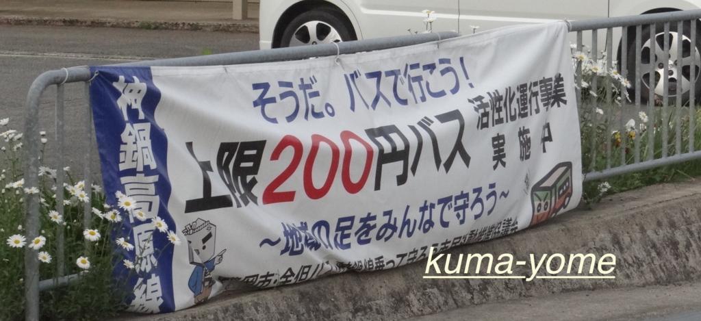 f:id:kuma-yome:20170523121857j:plain