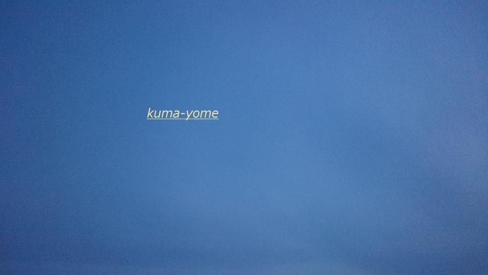 f:id:kuma-yome:20170611215042j:plain