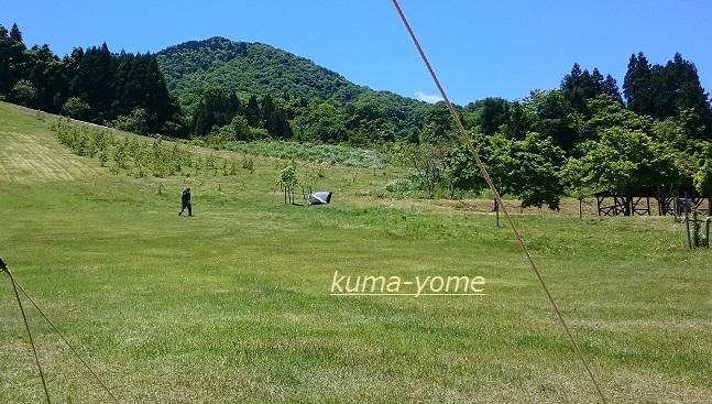 f:id:kuma-yome:20170611223807j:plain