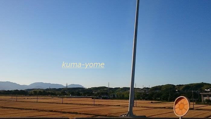 f:id:kuma-yome:20170611231526j:plain