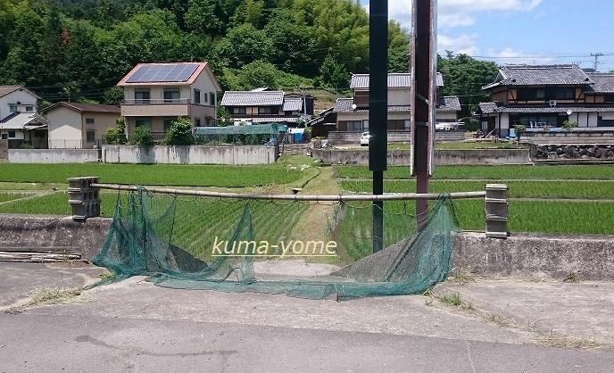 f:id:kuma-yome:20170611233640j:plain
