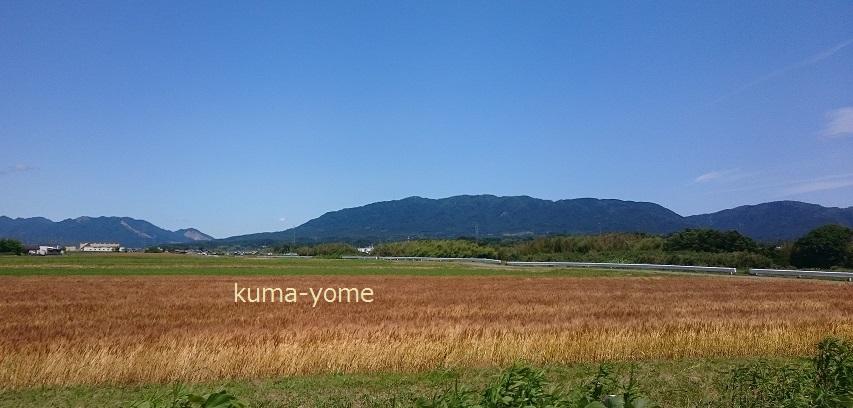 f:id:kuma-yome:20170612002814j:plain