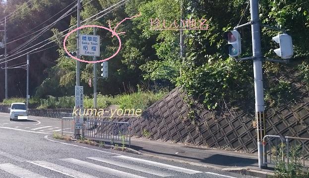 f:id:kuma-yome:20170612003305j:plain