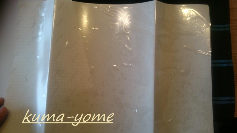 f:id:kuma-yome:20180215225115j:plain