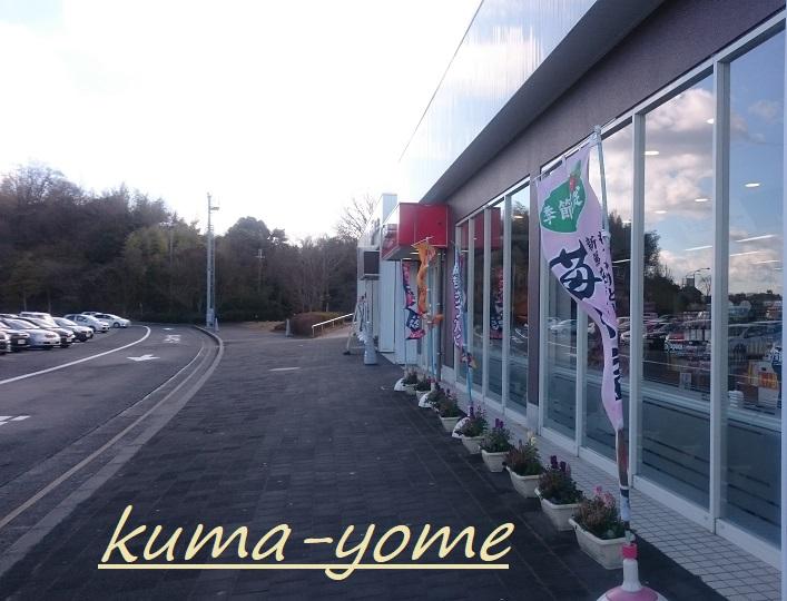 f:id:kuma-yome:20180222185926j:plain
