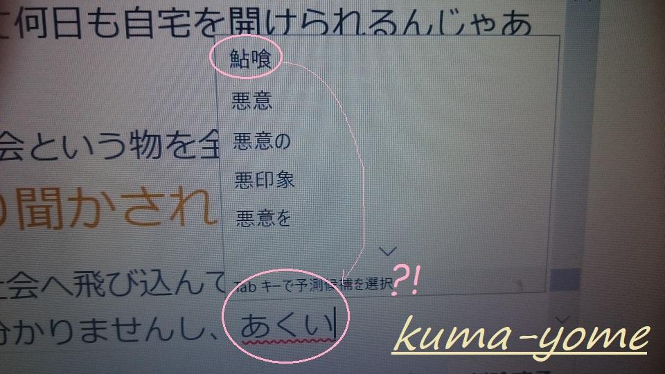 f:id:kuma-yome:20180303085826j:plain