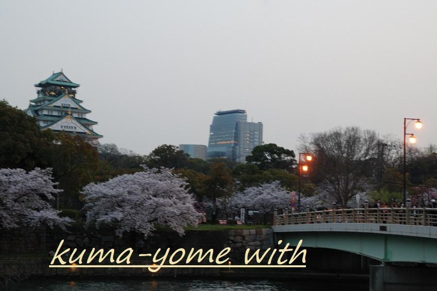 f:id:kuma-yome:20180414005057j:plain