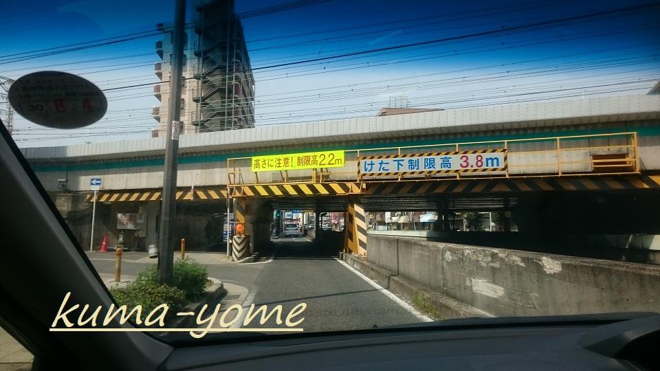 f:id:kuma-yome:20180426155103j:plain