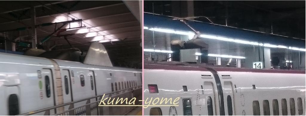 f:id:kuma-yome:20180429164845j:plain