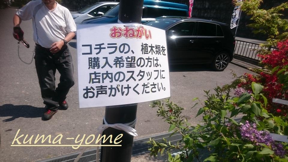 f:id:kuma-yome:20180629001202j:plain
