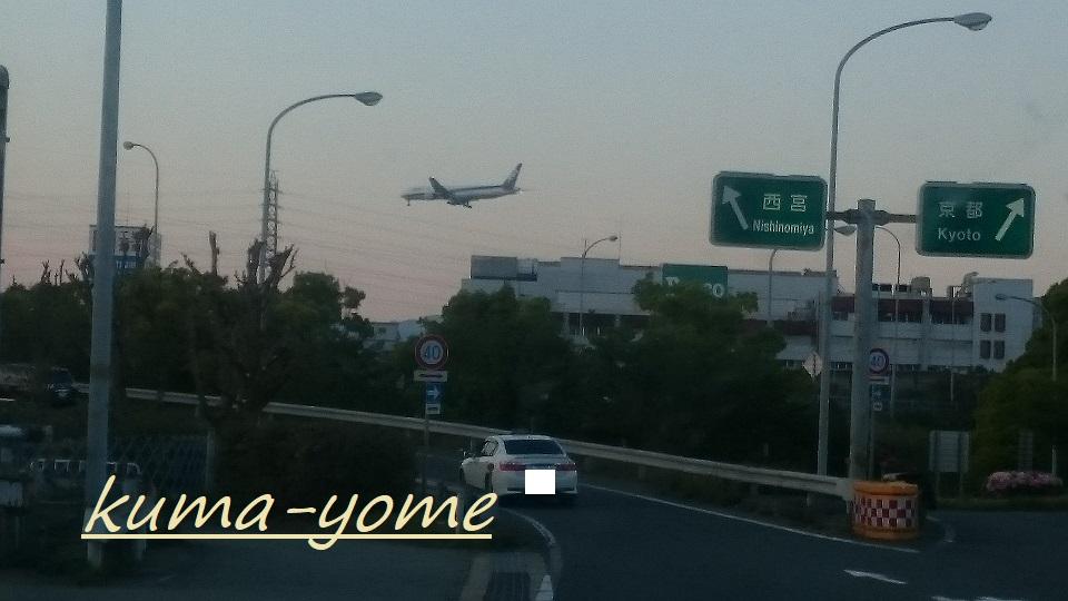 f:id:kuma-yome:20180705113349j:plain