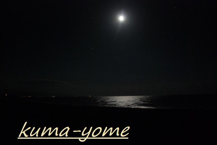 f:id:kuma-yome:20180713001017j:plain