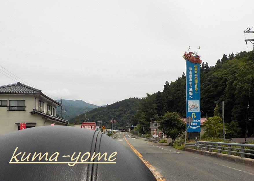 f:id:kuma-yome:20181231001746j:plain
