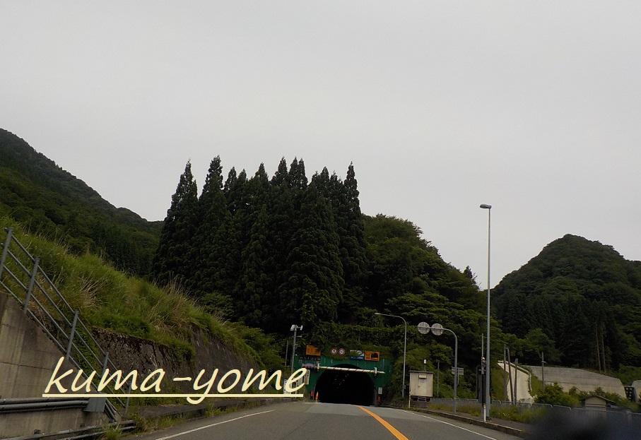 f:id:kuma-yome:20181231001849j:plain