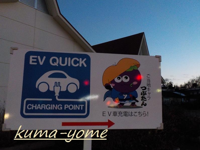 f:id:kuma-yome:20190206152430j:plain