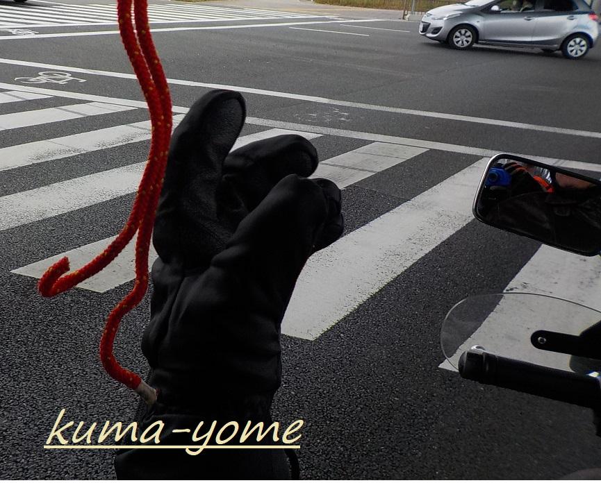 f:id:kuma-yome:20190207221339j:plain