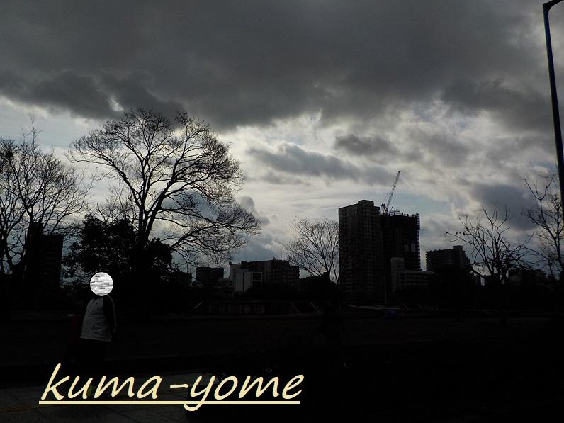 f:id:kuma-yome:20190207222133j:plain