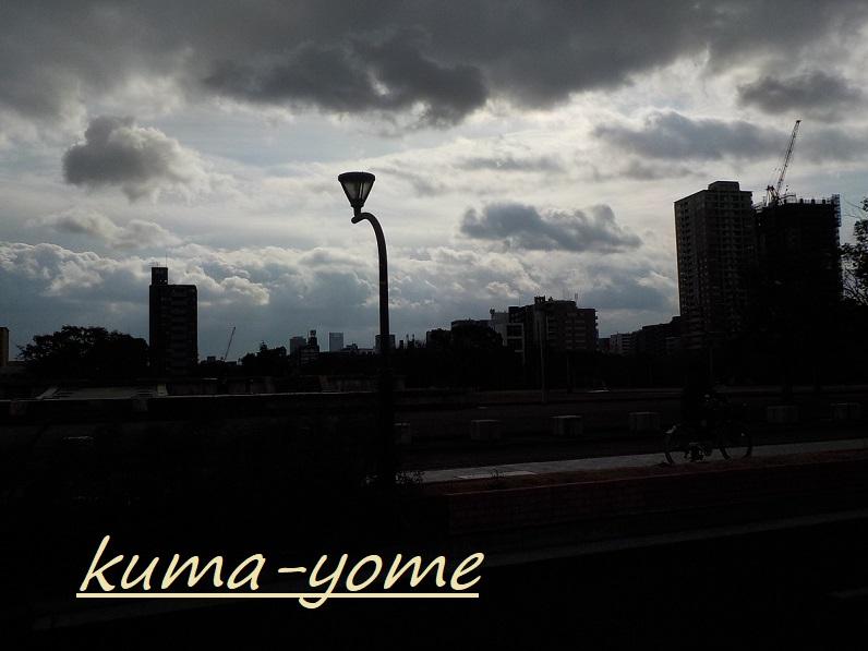 f:id:kuma-yome:20190207222155j:plain