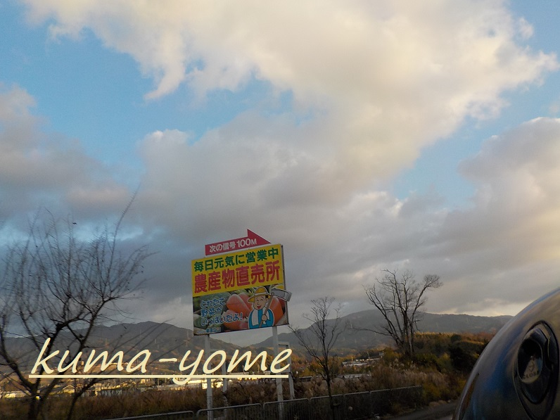 f:id:kuma-yome:20190207222537j:plain