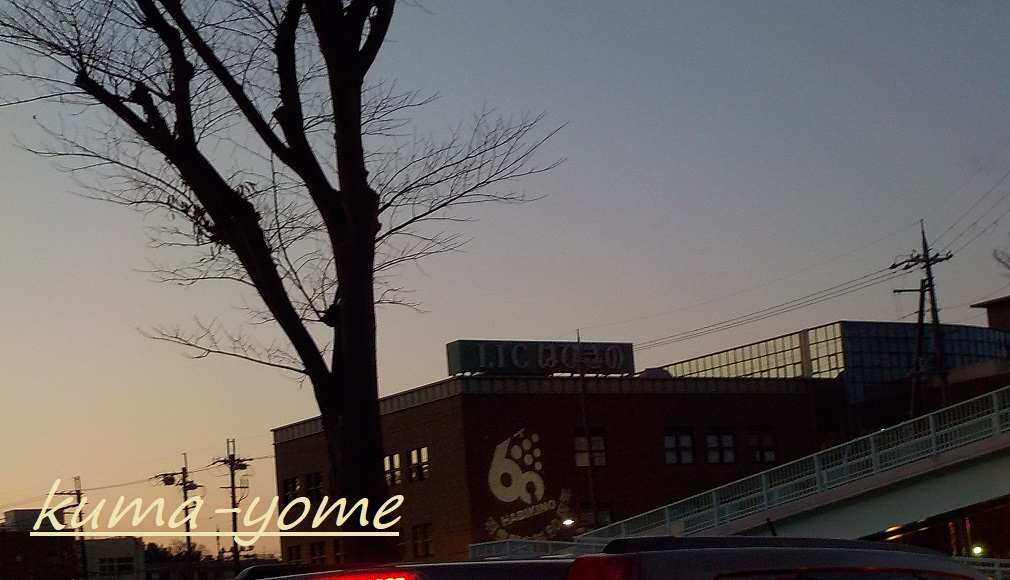 f:id:kuma-yome:20190207222936j:plain