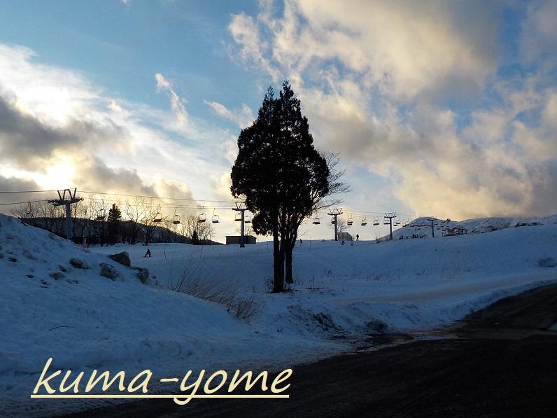 f:id:kuma-yome:20190212191036j:plain