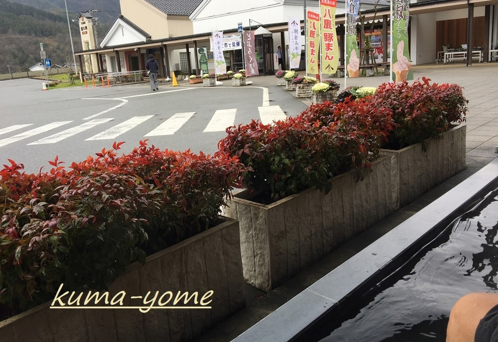 f:id:kuma-yome:20190219220550j:plain