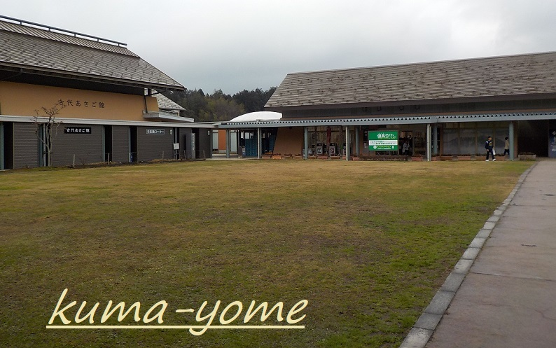 f:id:kuma-yome:20190219221530j:plain