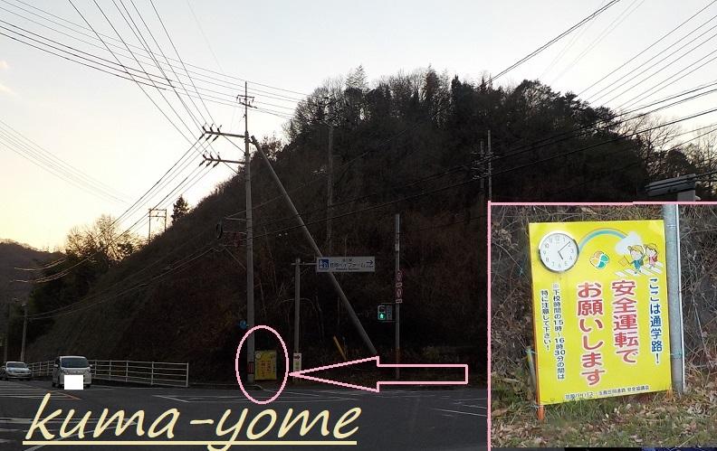 f:id:kuma-yome:20190309165109j:plain