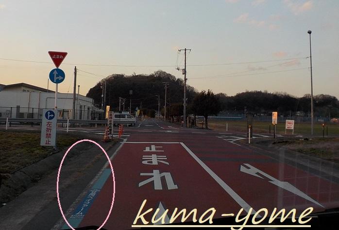 f:id:kuma-yome:20190309165120j:plain