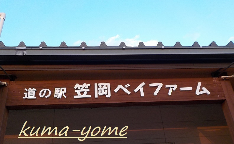 f:id:kuma-yome:20190309165129j:plain