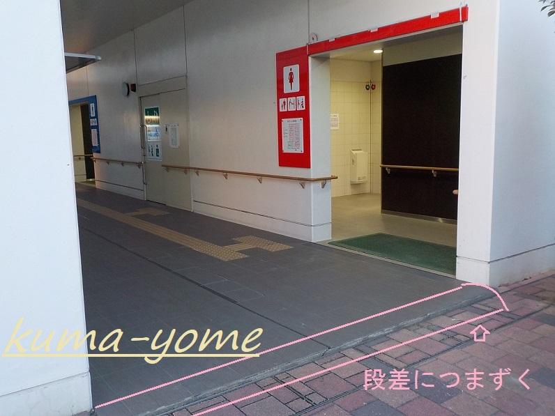 f:id:kuma-yome:20190309165141j:plain
