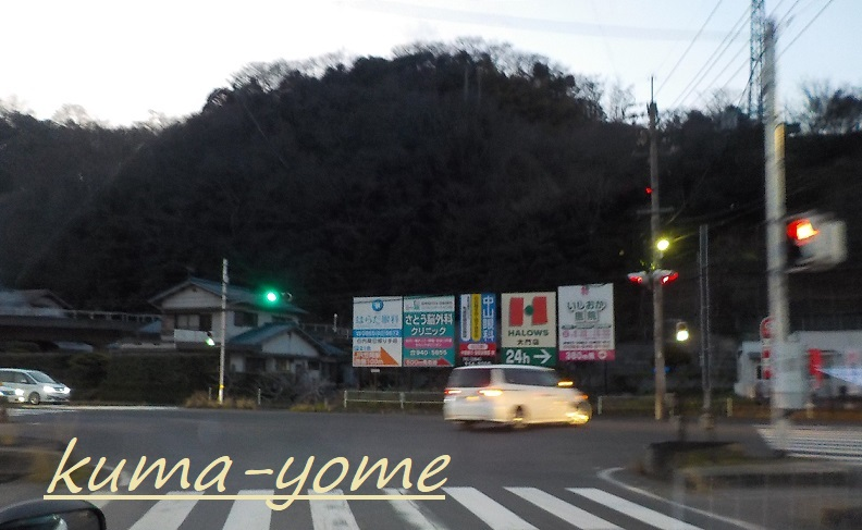 f:id:kuma-yome:20190309165423j:plain