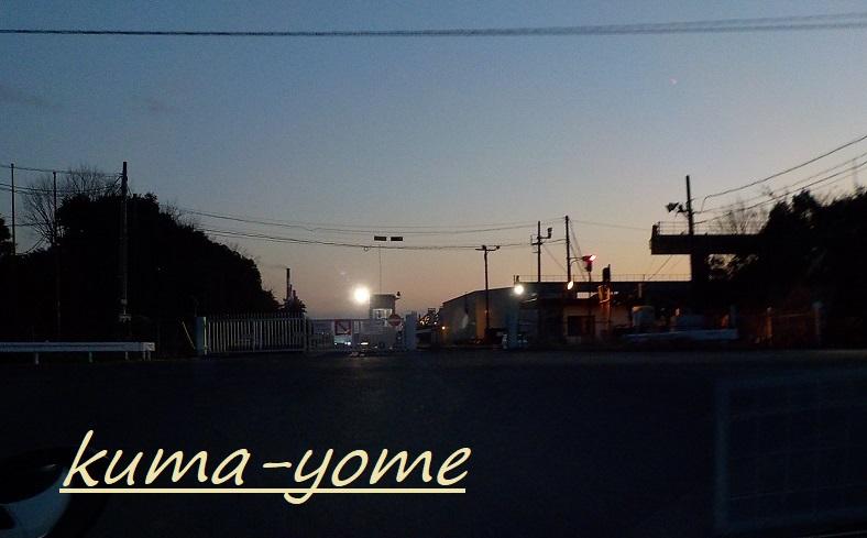 f:id:kuma-yome:20190309165433j:plain