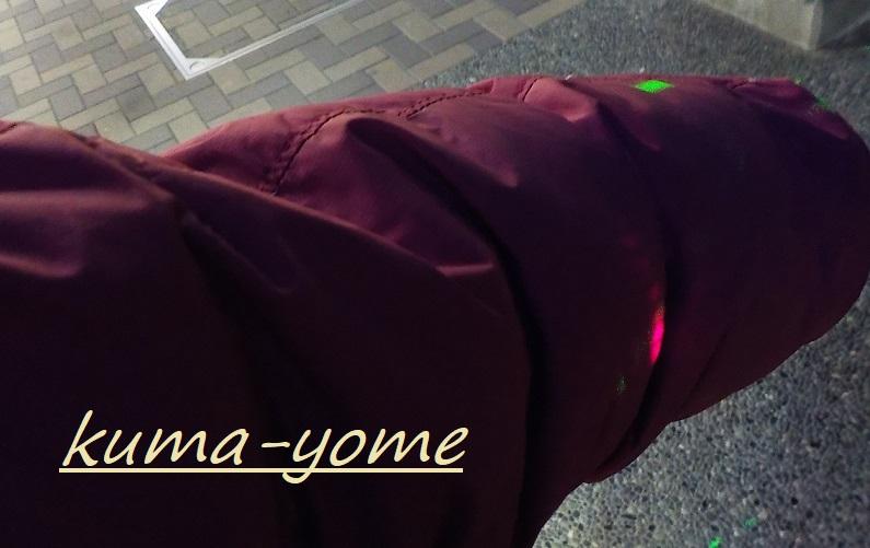 f:id:kuma-yome:20190309165740j:plain