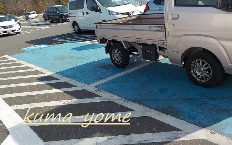 f:id:kuma-yome:20190309170219j:plain