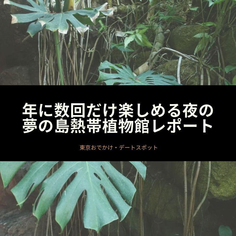 f:id:kuma110:20190818150500j:plain