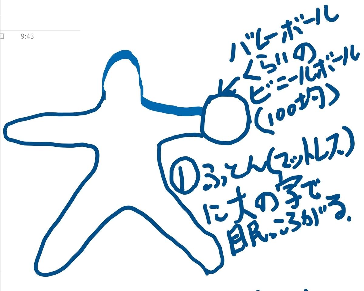 f:id:kuma117117:20200808102521j:plain