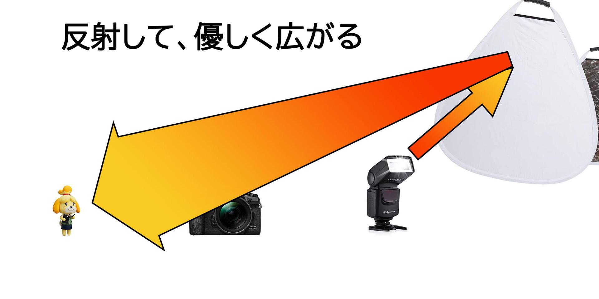 f:id:kuma2vanilla:20200613152231j:plain