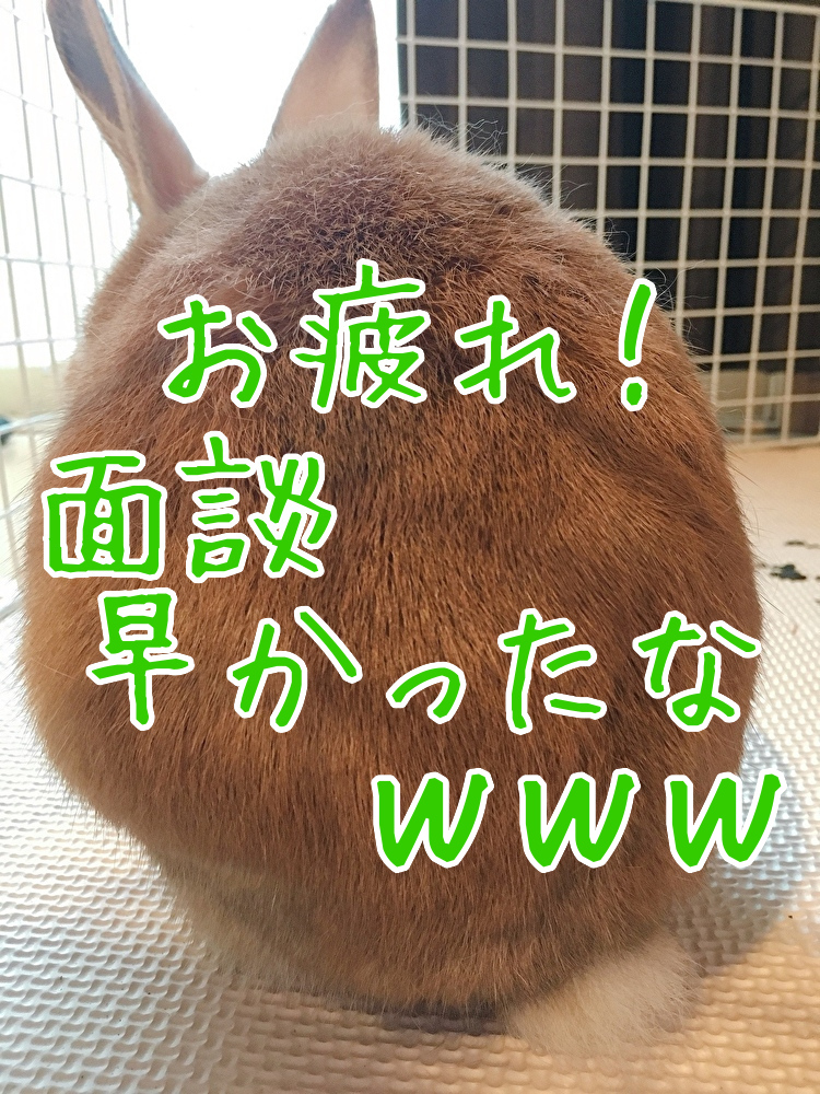 f:id:kuma306146:20200114184614j:plain
