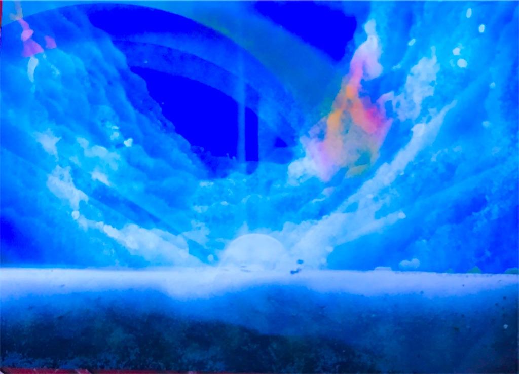 f:id:kumachanshobby:20210108170914j:image