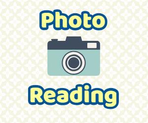 f:id:kumacooraclereading:20190224132732j:plain