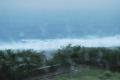 [旅][2009.10沖縄]アラシ
