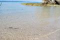[旅][2009.10沖縄]水がキレイな海